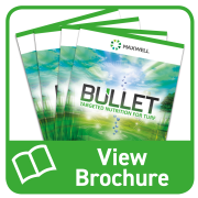 Request a Bullet Brochure