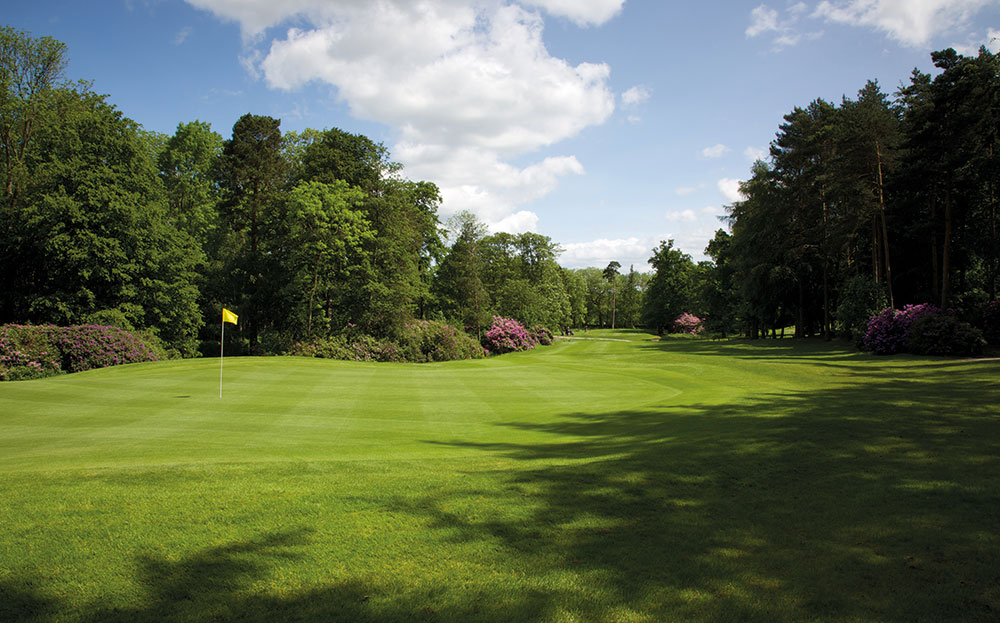 Rudding marvellous at Rudding Park Golf Club Background