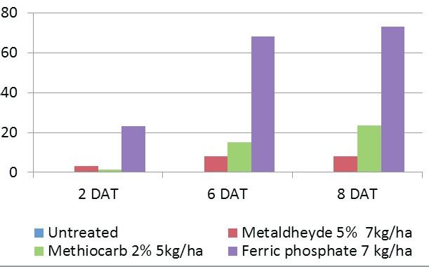 Efficiency of Sluxx on slugs vs. other active ingredients