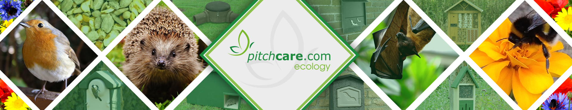 Ecology PC Shop Banner 3