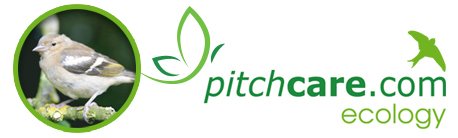 Energy Rich No Mess Bird Seed - Pitchcare Ecology