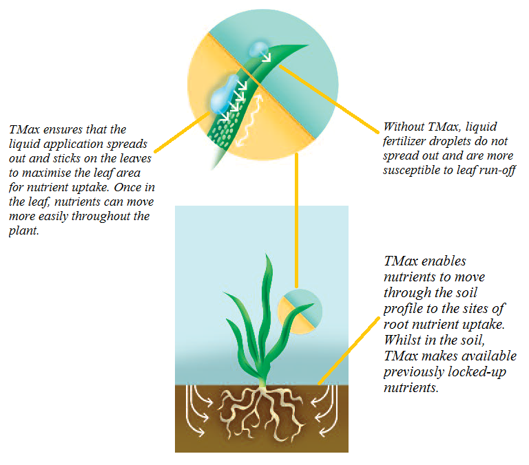 Instructional diagram of Tmax present in Everris Greenmaster Liquid Fertiliser