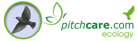 Pitchcare Ecology