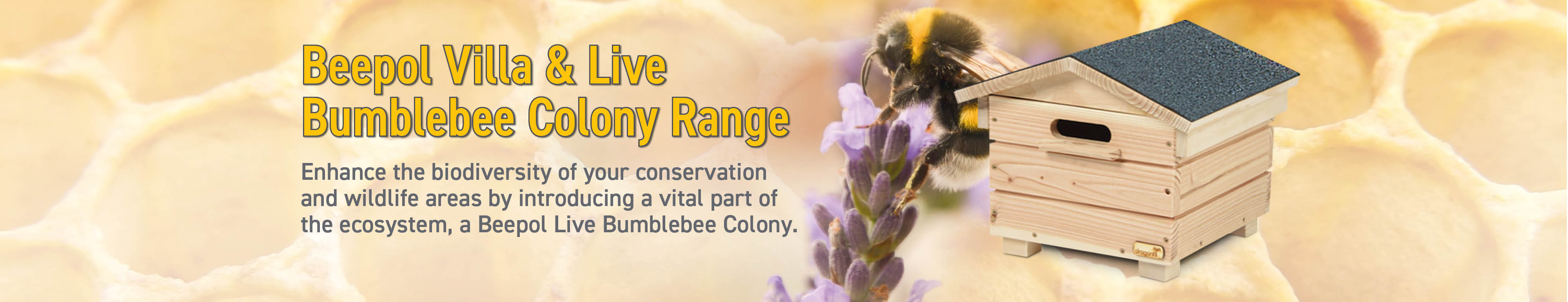 Beepol Villa & Live Bumblebee  Colony Range Slider