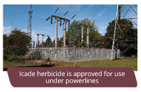 Icade herbicide is approved for use under powerlines