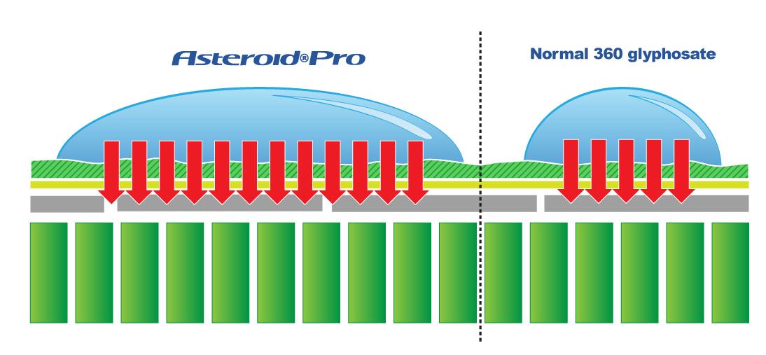 Asteroid Pro Glyphosate Weedkiller Coverage Diagram
