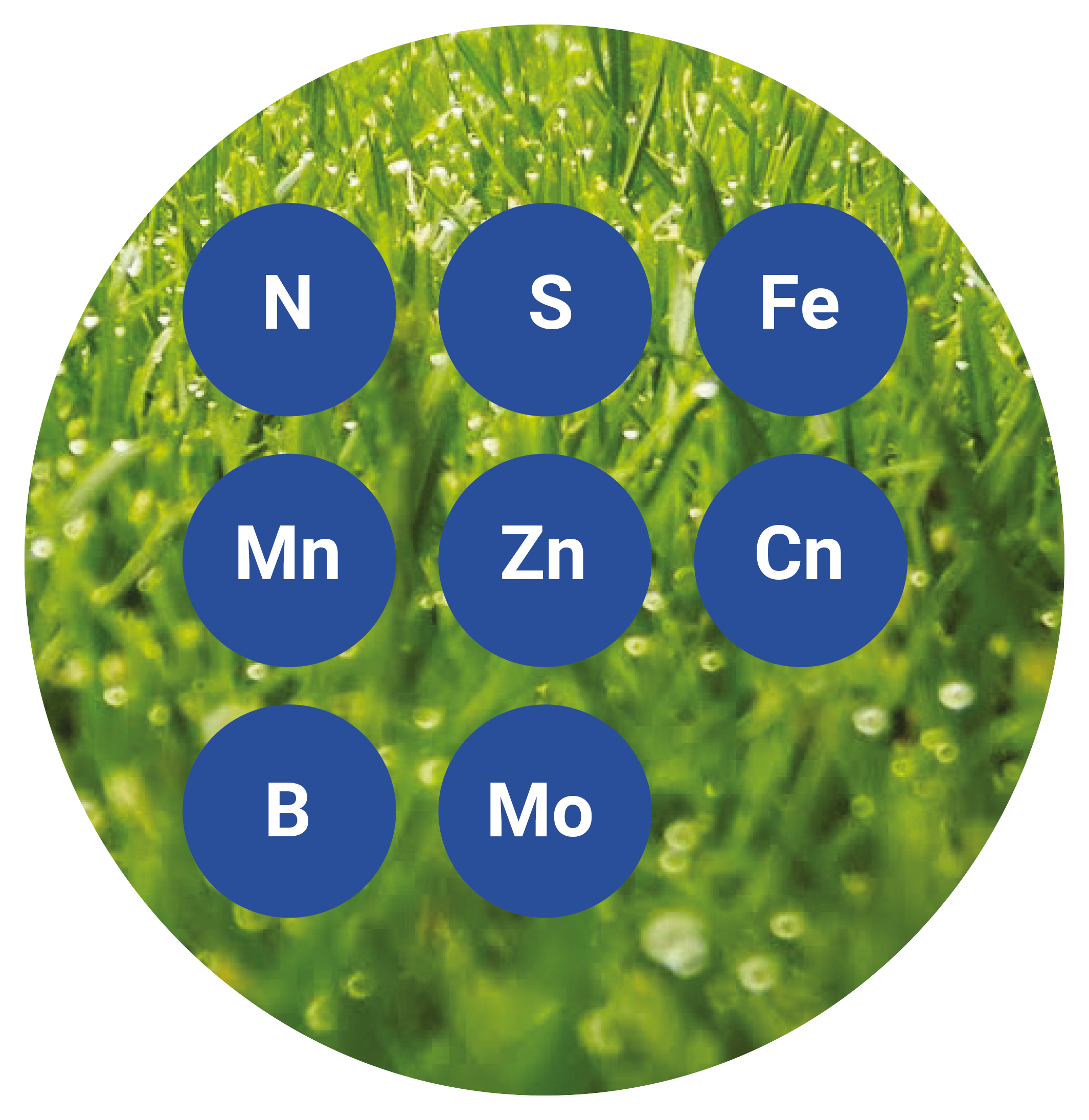 SolControl Fertiliser Elements