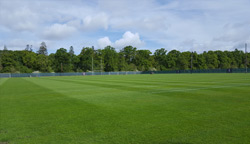 The Training Ground looks pristine ahead of the Lions coming to Carton House