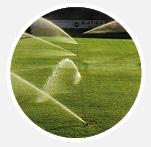 4. Irrigate