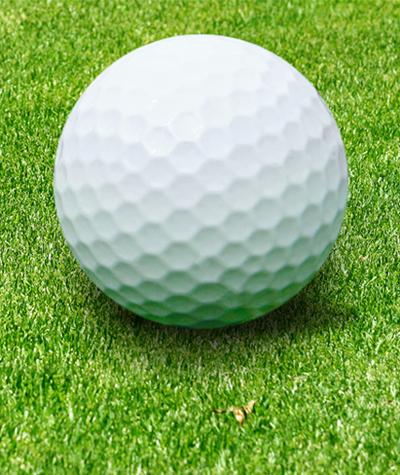 Golf Diary