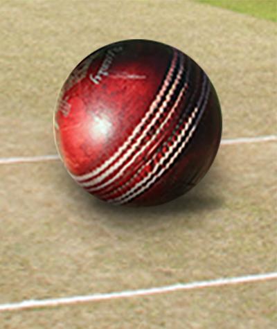Cricket Diary
