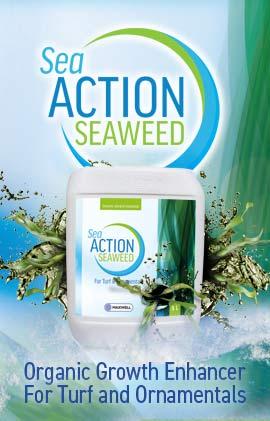 SeaAction Seaweed
