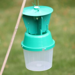 Chafer Beetle Trap
