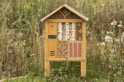 92095 Corsica Insect Hotel