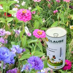 Colour Splashes Wildflower Seeds