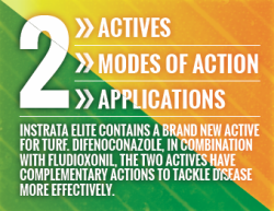 Modes of action of Instrata Elite