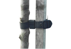 Rubberloc® Rubber Buckle Tree Ties 24mm