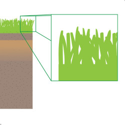 soil graphic 09