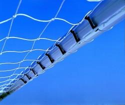 Net fixings plastic tie clips