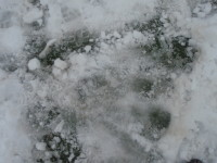 2   ice beneath snow on an artificial pitch
