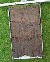 golf rootzone