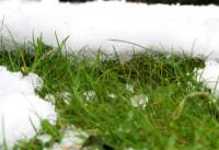 Snow blanket 5 mr