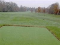 jan golf diary artificial tees.jpg