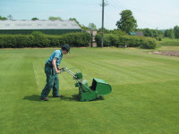dlf-mowing-the-grass-plots.jpg