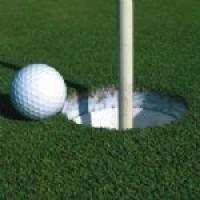 A11 Pic Golf.jpg