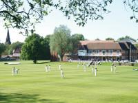 MGS Cricket