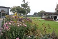 PackwoodSchool FlowerBeds