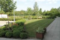 MarcusYoung gardens2
