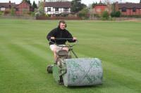 cricket mowing