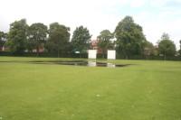 CricketWet.jpg