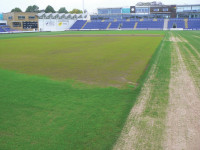 Swalec Germination3