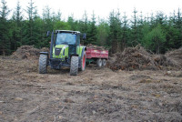 Forest Pitch   clearing of stumps   004