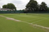 Roehampton TennisCourts Grass