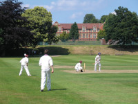 Bromsgrove Cricket