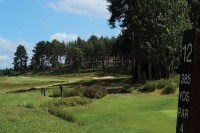 Sunningdale Fairway2