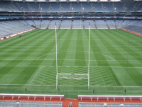 fig 13; pitch prepared for all ireland hurling final, 6 weeks after laying.jpg