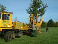 treemoving