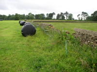 dry stone wall damage pre starting 003