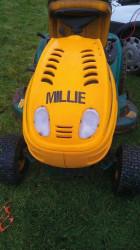 NWCC Millie