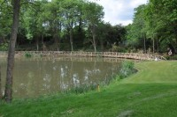 AFTER   The Sundridge Park Golf Club pond in June 2012 with the Diamond Jubilee bridge built from the club\'s own trees by forester Terry Gladwell  DSC 0725   Copy
