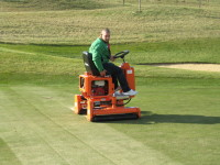 AA Rolling green with Salsco Roller after tining and top dressing