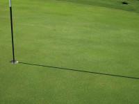 Greg Evans Golf Green at 2mm