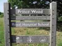 RHS PrinceWood