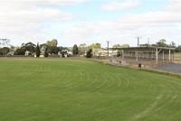 Alma Oval