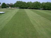 Cricket Outfield june 2006 007.jpg