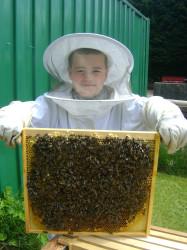 bees and eddie 002